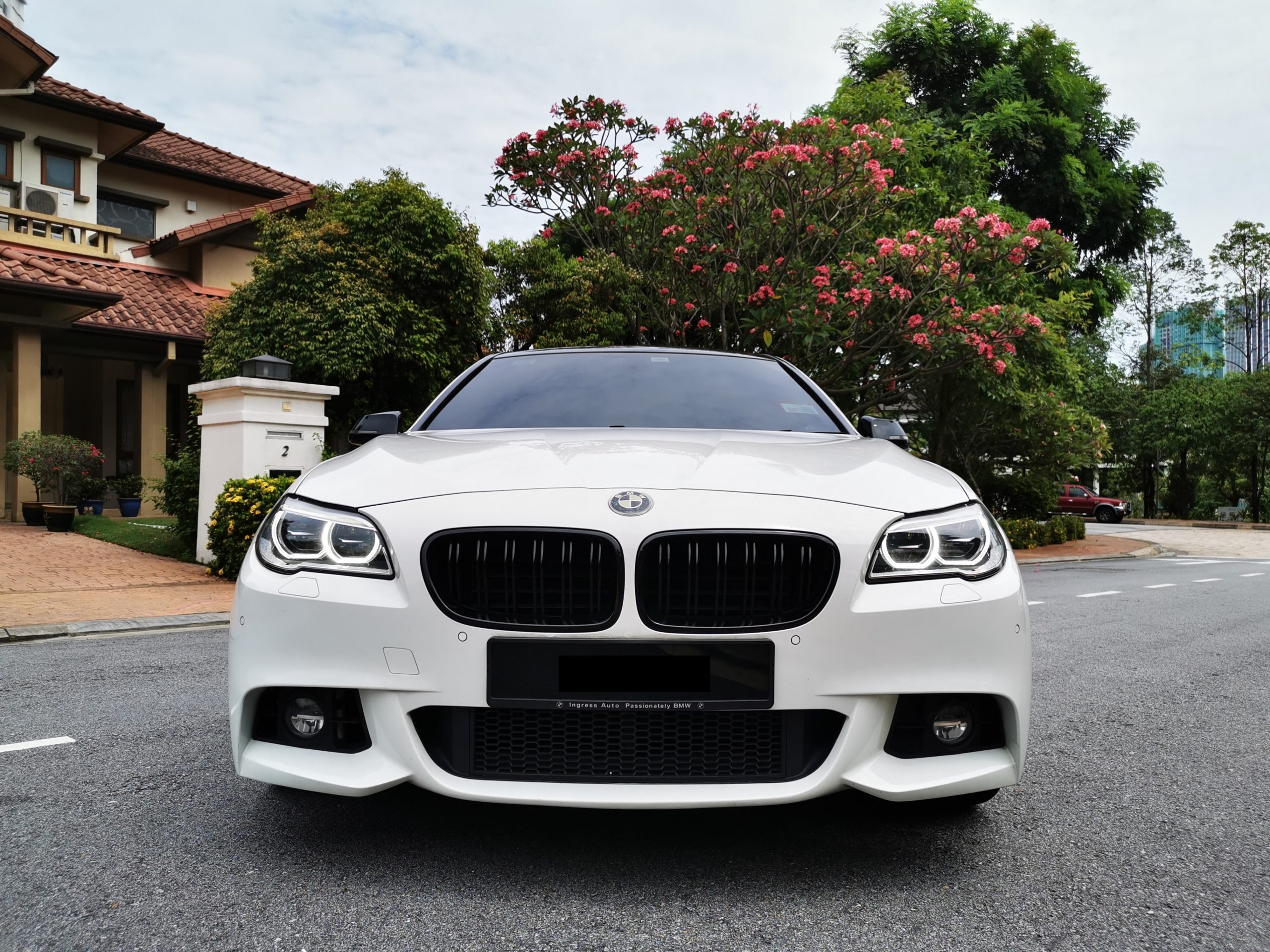 BMW 528i Front view grille